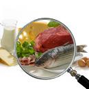 Il focus sulla nutrizione